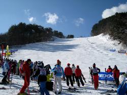 20100119_8