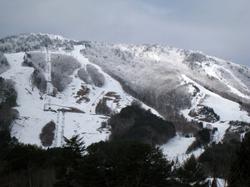20100213_1